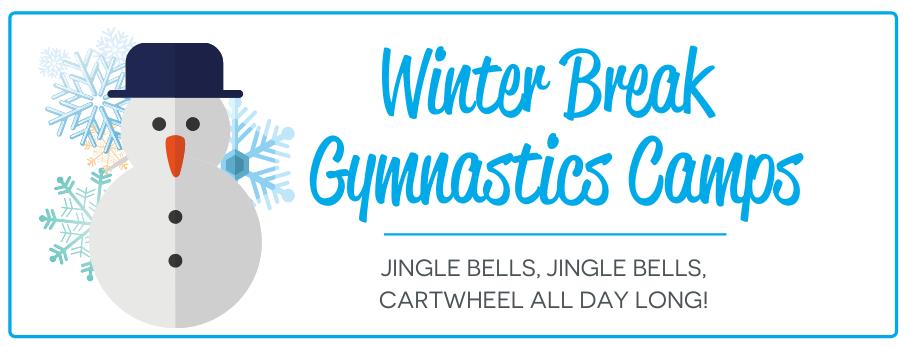 Winter Break Camp Website Banner