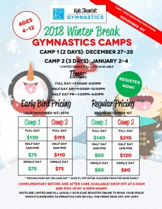 Winter Camp 2018 flyer