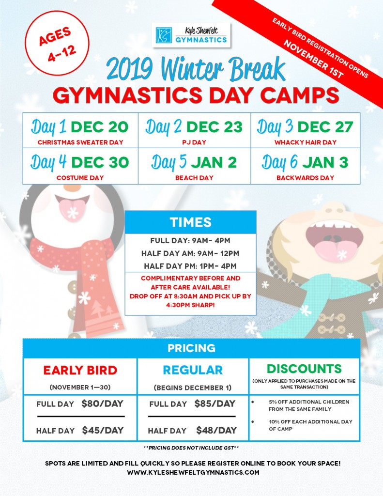 Winter Camp 2019 flyer